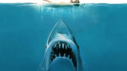 45 jaar na 'Jaws': het waargebeurde verhaal achter een huiveringwekkend bloedbad