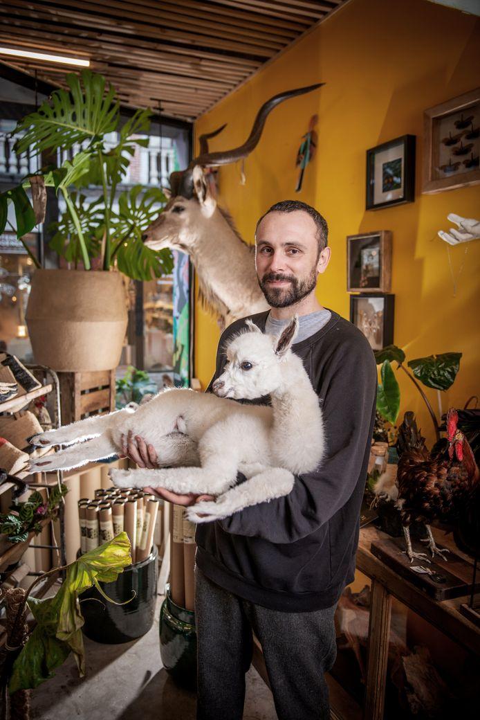 Naast de klassiekers, zoals vossen en overleden huisdieren, vind je bij Animaux Spéciaux ook alpaca's, bijen, piranha's... en 'speciallekes', zoals een rat met het raderwerk van een klok in de buik.