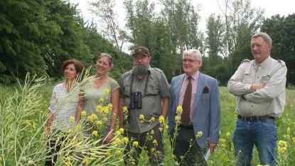 237 hectare Limburgse grond ingezaaid voor bloemrijke weiden