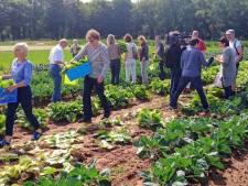 De nieuwe herenboeren, ze willen een collectieve boerderij stichten in Twente