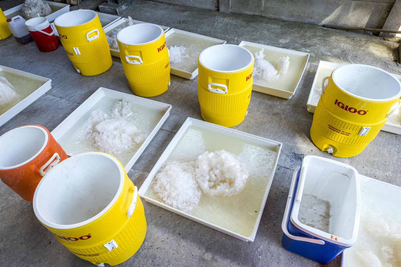 Certaines des matières premières et substances trouvées dans le laboratoire.