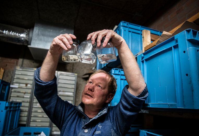 Ecologisch analist Jan Kuper: 'Ik ontdekte een spillebeenvlieg… Ja, dan zijn wij insectenmannen wel even opgewonden.' Beeld Koen Verheijden