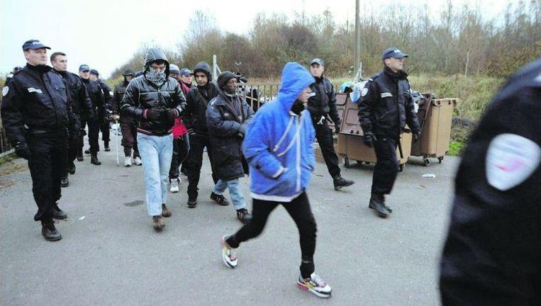 Franse politieagenten verwijderen illegale immigranten van een terrein in de Noord-Franse stad Teteghem. Foto: epa Beeld