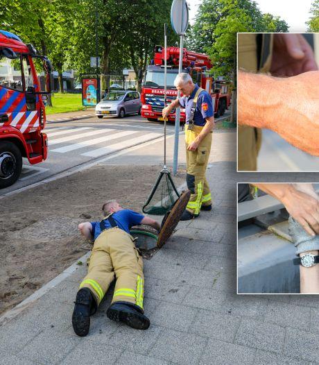 Eendjes hardleers: brandweer rukt uit voor tweede bevrijdingsactie en schakelt gemeente Apeldoorn in