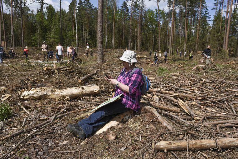 Natuurbeschermers hielden vorige maand een protest tegen de houtkap in het oerbos van Bialowieza.  Beeld Hollandse Hoogte