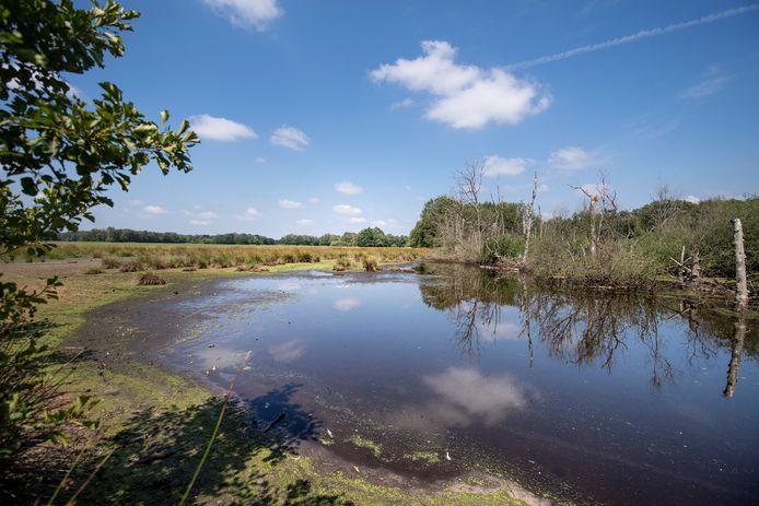 De Zunasche Heide maakt deel uit van de kavelruil waardoor natuurgebieden in de IJsselstreek meer aaneengesloten worden.