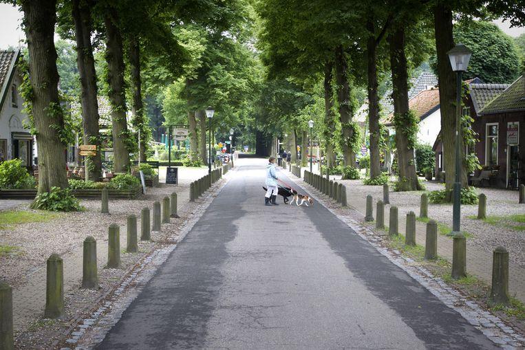 Beeld Straatvan Lage Vuursche.