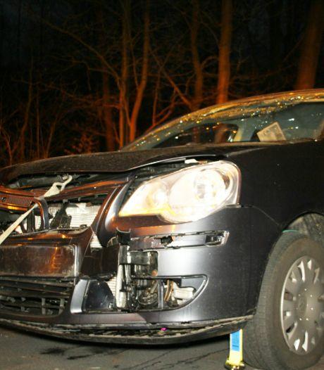 Bestuurder kan ree bij Holten niet ontwijken: auto total loss, dier overleden