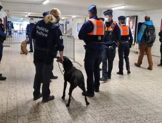 Politie maakt eerste balans op van 'war on drugs' in Sint-Niklaas: 10 dealers opgepakt, 312.755 euro in beslag genomen