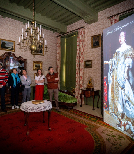 Kamerscherm als projectiedoek in kasteel Rosendael