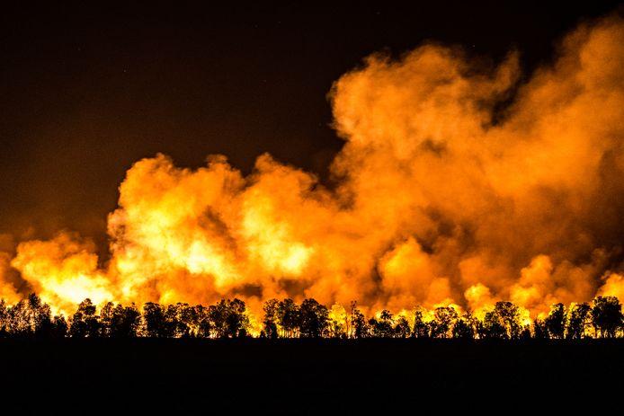 Vuurhaarden bij zeer grote natuurbrand in de Mariapeel nabij Deurne. De hulpdiensten hebben noodscenario GRIP-3 afgekondigd en diverse huizen in Liessel en Griendsveen geëvacueerd.