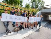 Leerlingen van de Stichtse vrije School uit Zeist hebben ontwerpen voor muurschilderingen gemaakt om de muren van de fietstunnel van het Landgoed Vollenhove te beschilderen.