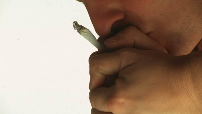 Politie treft 20 kilogram cannabis aan in wagen