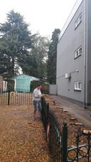 Door de kap van de metershoge coniferen kijkt de familie Van Lierop in Halsteren niet lange tegen groen aan, maar tegen de muur van appartementencomplex De Merel.