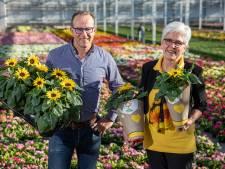 100.000 zonnebloemen verkopen voor de Zonnebloem