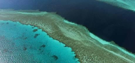 La Grande Barrière de corail évite la liste des sites en péril, l'Australie satisfaite