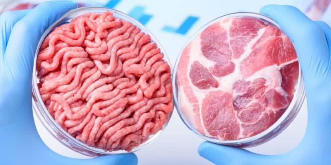Kweekvlees laat nog even op zich wachten
