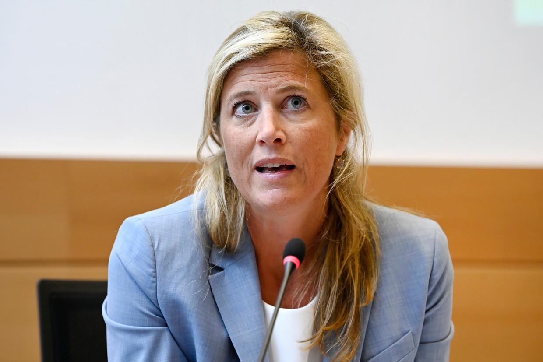 Minister van Binnenlandse Zaken Annelies Verlinden (CD&V). Beeld Photo News
