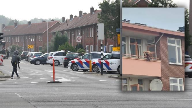 Twee doden bij kruisboog-incident in Almelo, schutter gewond: 'Geschokt en ontdaan'