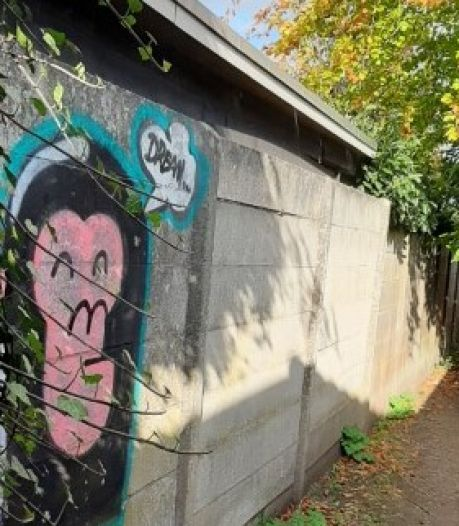 Torenpad ligt er in Moergestel 'schandalig' bij, vindt de dorpsraad