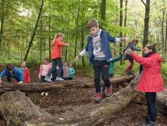 Veilig ravotten in Desselse bossen dankzij zomerspeelzones