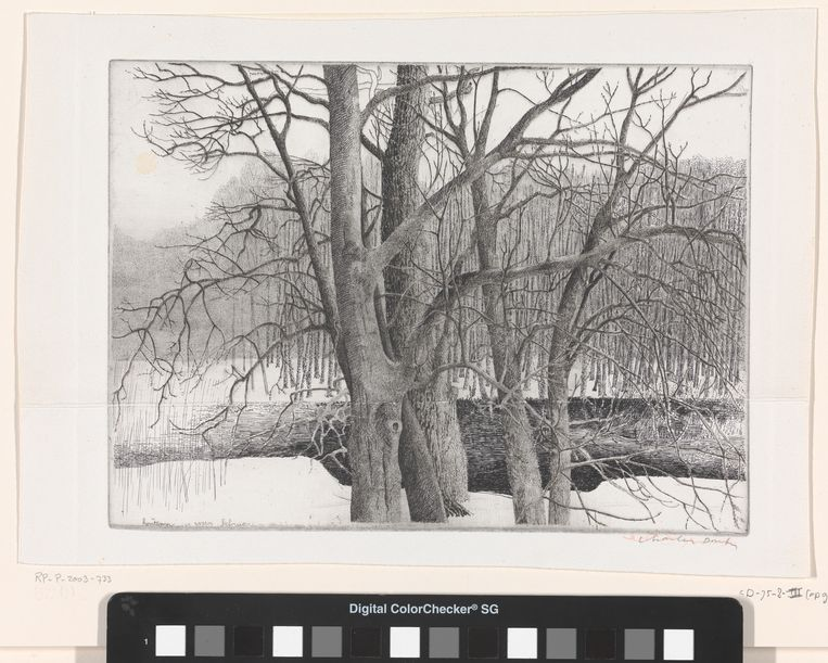 Vier essen, Rhijnauwen, 1977.  Beeld Charles Donker