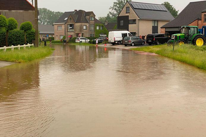 De Suikerstraat in Lede kwam helemaal onder water te staan.