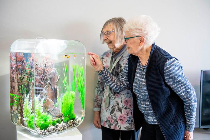 Roelie Kramer (links) en Hennie van Wezep bewonderen het aquarium in het Prins Claushuis in Nijverdal, dat de inwoners van dit zorgcentrum voor dementerende ouderen woensdag cadeau hebben gekregen van de plaatselijke Rotaryclub.