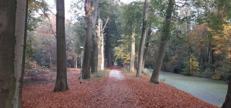 Natuurvereniging schaart zich achter plan voor voormalig Land van Ooit: ruimte voor 'landschapszone' in Steenenburg