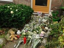 Twaalf jaar cel voor doden ex-vrouw in Hoevelaken blijft staan voor Fathi A.