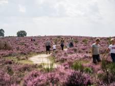 Toerisme moet wel nog leuk blijven, ook in Gelderland