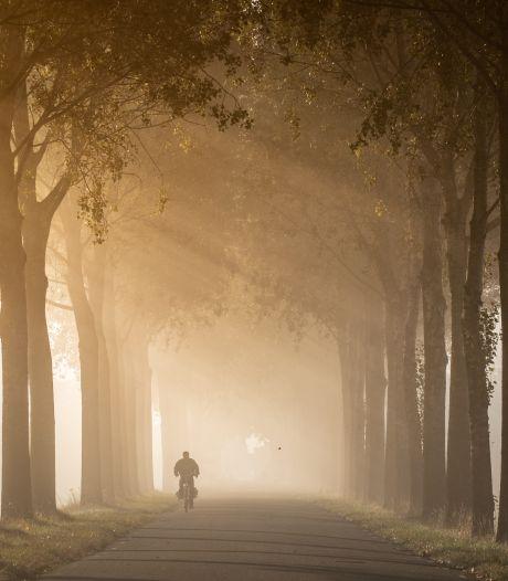 Stuur je mooiste Rotterdamse herfstfoto's in! 🍂