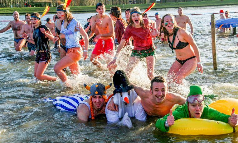 De Wase IJsberenduik op De Ster is uitgegroeid tot het tweede grootste evenement in zijn soort in ons land, na de Noordzeeduik in Oostende.