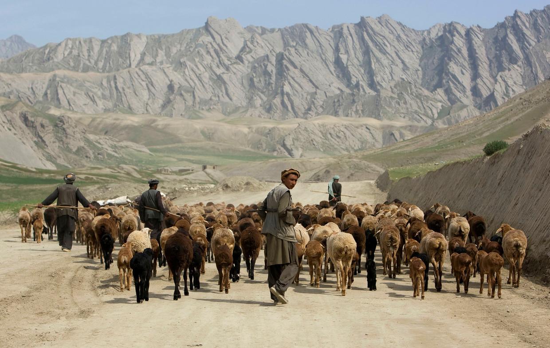 Afghaanse herders leiden een kudde schapen langs de weg naar de hoofdstad van de provincie Badakhshn, ten noordoosten van Kaboel.