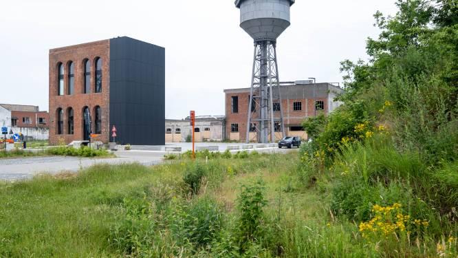 """Versneld uitgebreid bodemonderzoek in woonsite De Naeyer na PFAS-verontreiniging: """"De grootste gezondheidsrisico's voor de bewoners worden onmiddellijk weggewerkt"""""""