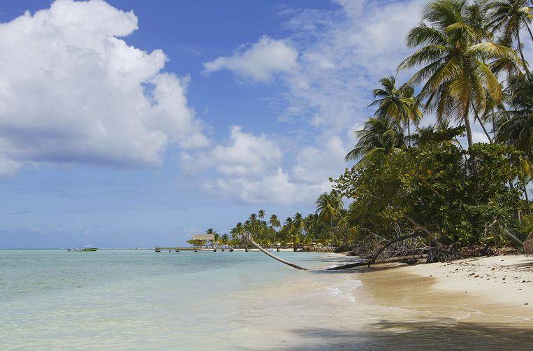 Tobago Beeld thinkstock