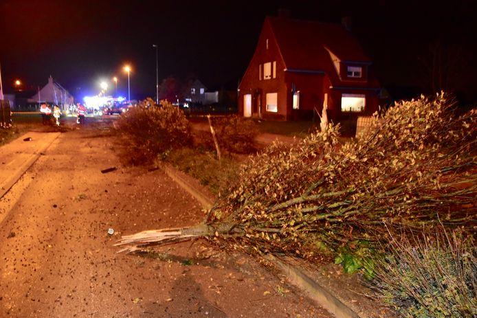 De Audi A6 vloog over een met groen beplant verkeerseiland en richtte daar over een afstand van 50 meter een grote ravage aan, bij het ongeval langs de Ieperstraat in Hooglede.