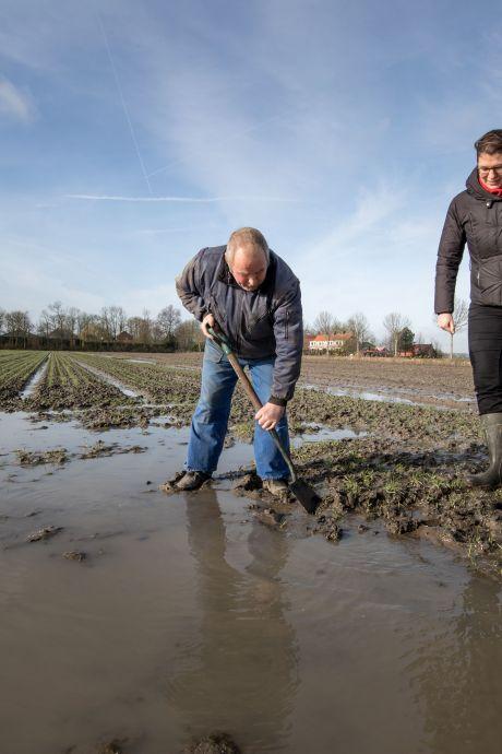 Wat te doen aan de bodemdaling in Flevoland? 'Een pompje plaatsen is niet genoeg'