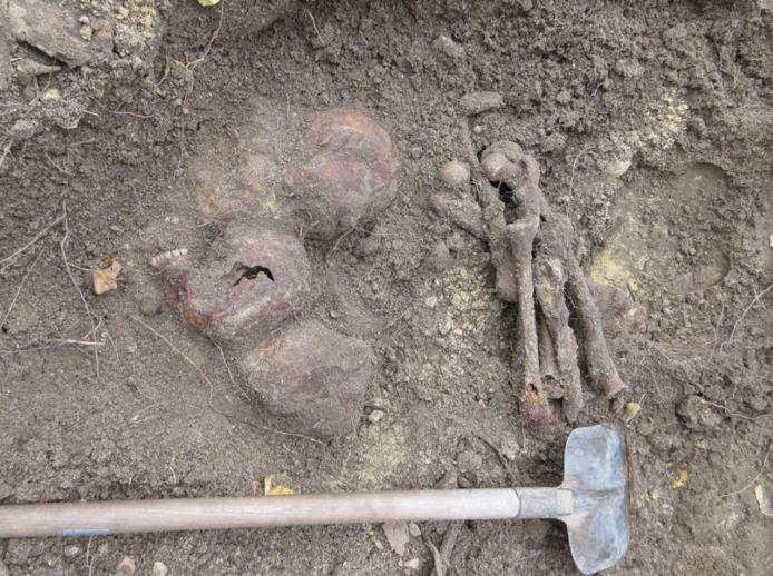 Botten en schedels van zeker vijftien mensen werden blootgelegd door archeologen op het Kerkplein in Putten.