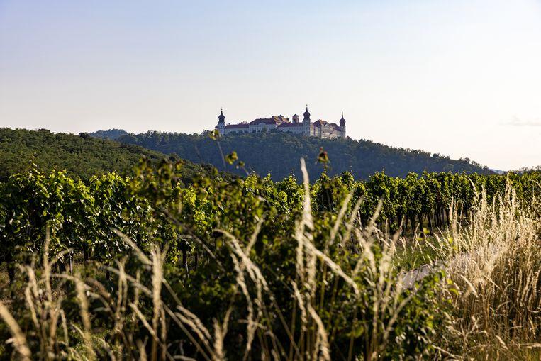Weingut Geyerhof. Sinds 1988 produceren ze biologische wijn.  Beeld Julius Schrank