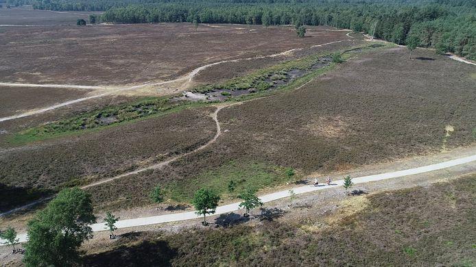 De droogte laat zijn sporen op de Veluwe.