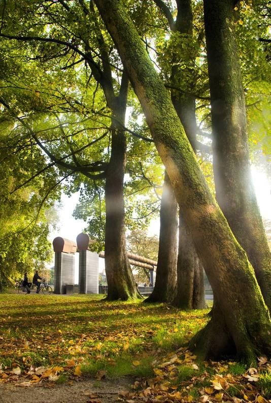 De zeven kilometer lange groene long rond Brugge vormt het perfecte decor voor een rondje joggen.