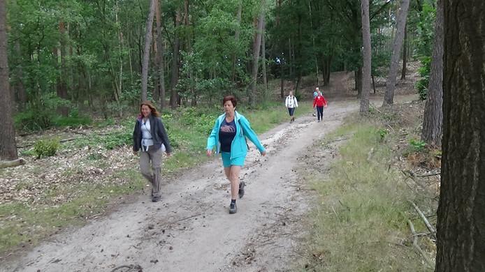 De Vierdaagse Apeldoorn kent veel kilometers door het bos.