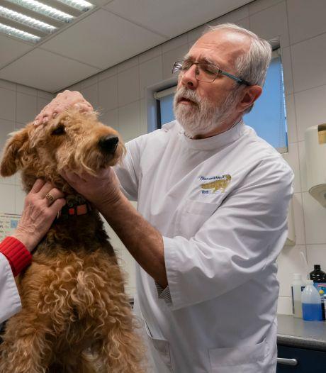Dierenarts Vos is niet bang voor hondenbeet of kattenkrab: zélfs niet als het hem zijn vingertopje kost
