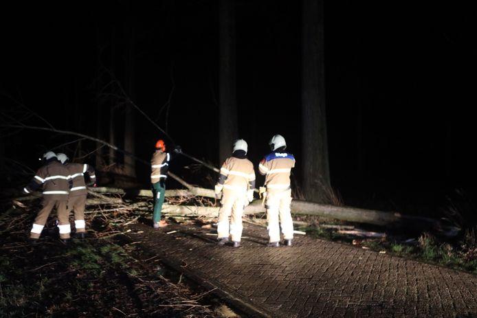 Afgebroken boomtop blokkeerde de weg in buitengebied Gemonde.
