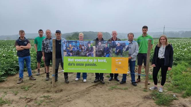 """Landbouwers Beersel vrezen voor toekomst nu vruchtbare grond naar natuurprojecten gaat: """"Zonder uitleg hectaren aan perfecte velden kwijt"""""""