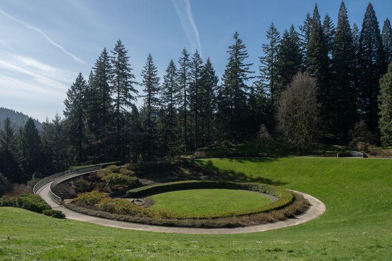 Een stadspark in Portland waar dr. Kenya Williams het geluidsniveau meet. Beeld Eline van Nes