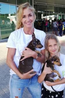 Arm zwerfhondje vernoemd naar dochter Wendy en Winston doet pikante bekentenis