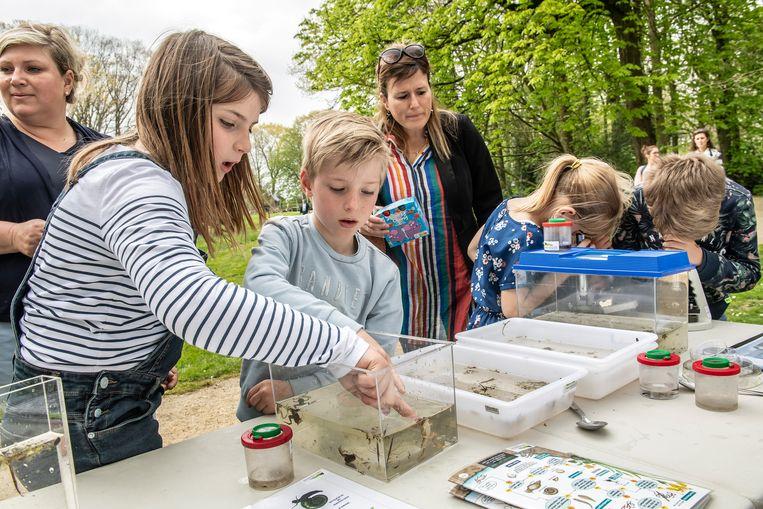 Kinderen leren amfibieën kennen in Wallemote.