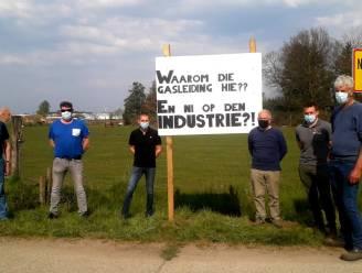 """Herentalse boeren protesteren tegen komst van ondergrondse pijpleiding: """"Samen met onze gronden neemt men ook onze toekomst hier af!"""""""